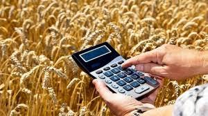 Огляд світових ринків зернових та олійних від 30.06.2020
